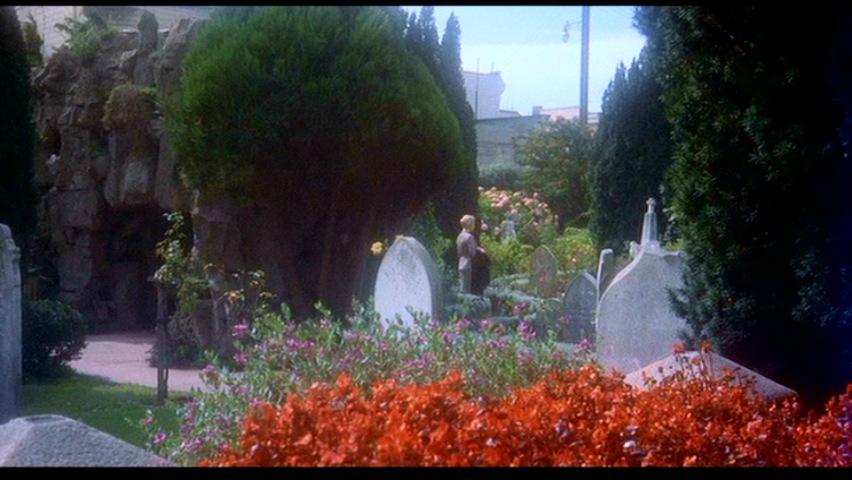 vertigo-Fleur9-cimetière2