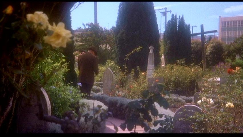 vertigo-Fleur9-cimetière4